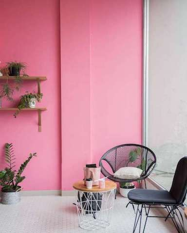 pink-feature-wall